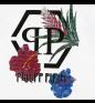 Т-майка PHILIPP PLEIN Flowers