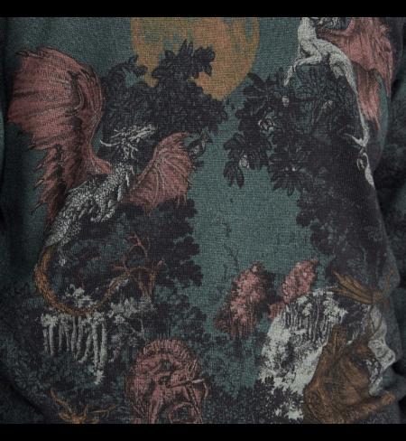 Džemperis  Dragon